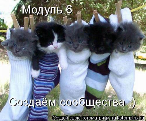 Котоматрица: Модуль 6 Создаём сообщества :)