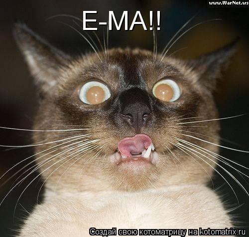 Котоматрица: Е-МА!!