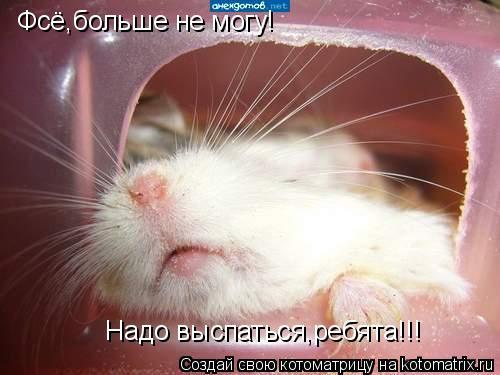 Котоматрица: Фсё,больше не могу!   Надо выспаться,ребята!!!