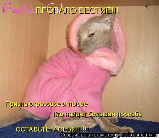 Котоматрица: ПРОПАЛО БЕСТИЕ!!! Признаки:розовое и лысое Кто найдет большая просьба ОСТАВЬТЕ У СЕБЯ!!!!!!