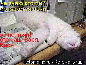 Котоматрица: не знаю кто он? но кажется пьян! он не пьян! это наш Вася, Вася......