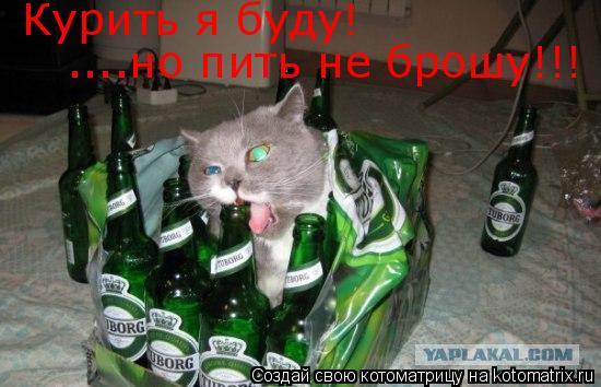 Котоматрица: Курить я буду! ....но пить не брошу!!!