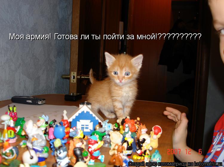 Котоматрица: Моя армия! Готова ли ты пойти за мной!??????????
