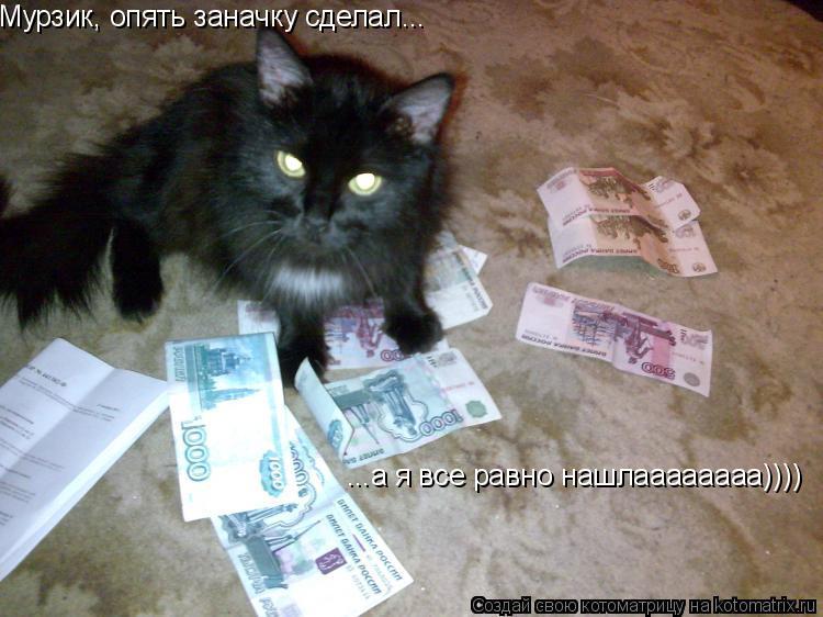 Котоматрица: Мурзик, опять заначку сделал... ...а я все равно нашлаааааааа))))