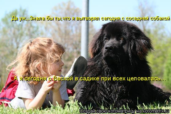 Котоматрица: А я сегодня с Ваской в садике при всех целовалась... Да уж...Знала бы ты,что я вытворял сегодня с соседней собакой...