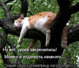 Котоматрица: Можно и отдохнуть немного... Можно и отдохнуть немного... Ну вот, уроки закончились!