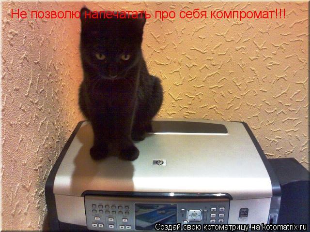 Котоматрица: Не позволю напечатать про себя компромат!!!