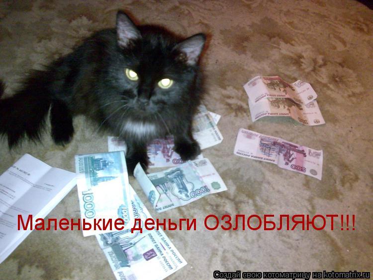 Котоматрица: Маленькие деньги ОЗЛОБЛЯЮТ!!!