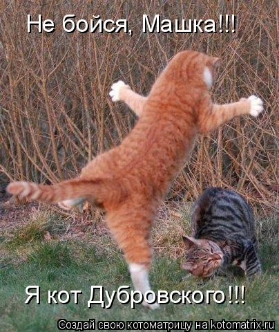 Котоматрица: Не бойся, Машка!!! Я кот Дубровского!!!