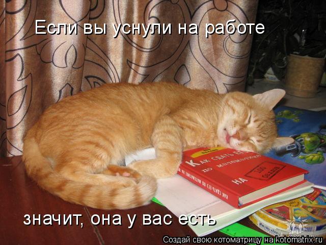 Котоматрица: Если вы уснули на работе значит, она у вас есть