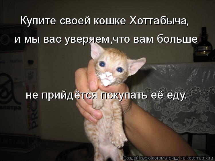 Котоматрица: Купите своей кошке Хоттабыча , , и мы вас уверяем,что вам больше не прийдётся покупать её еду.