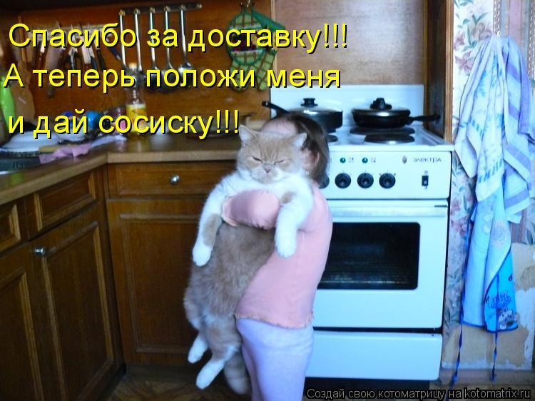 Котоматрица: Спасибо за доставку!!! А теперь положи меня  и дай сосиску!!!