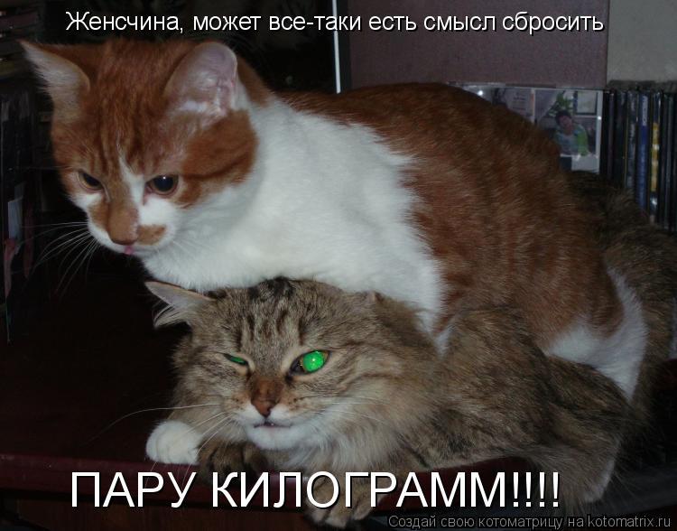 Котоматрица: Женсчина, может все-таки есть смысл сбросить  ПАРУ КИЛОГРАММ!!!!