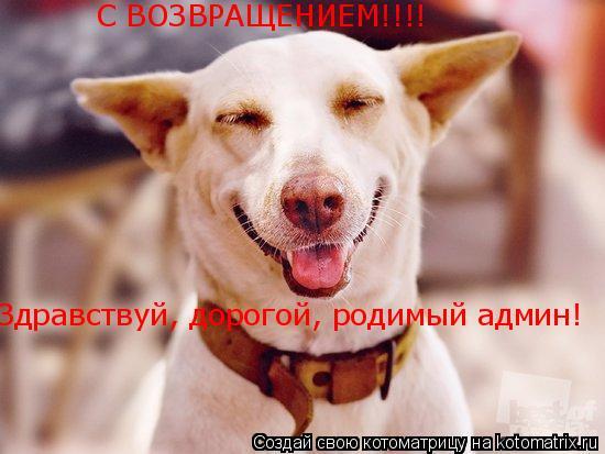 Котоматрица: Здравствуй, дорогой, родимый админ! С ВОЗВРАЩЕНИЕМ!!!!