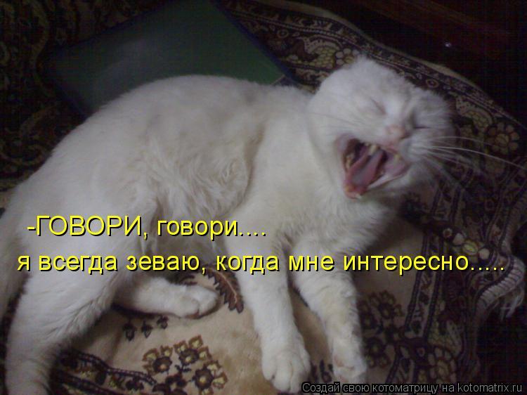 Котоматрица: -ГОВОРИ, говори.... я всегда зеваю, когда мне интересно.....