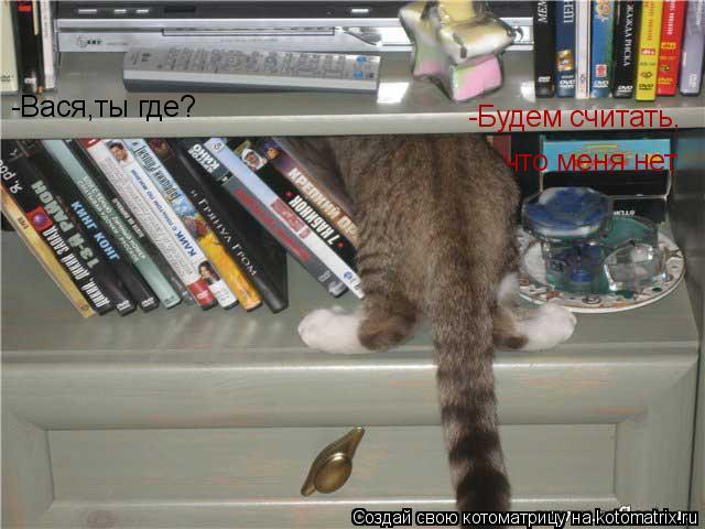 Котоматрица: -Вася,ты где? -Будем считать, что меня нет