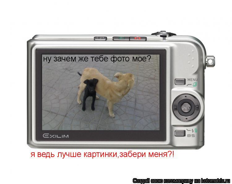 Котоматрица: ну зачем же тебе фото мое? я ведь лучше картинки,забери меня?!