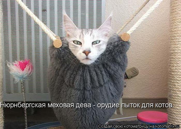Котоматрица: Нюрнбергская меховая дева - орудие пыток для котов.