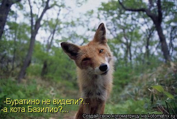 Котоматрица: -Буратино не видели?... -а кота Базилио?...