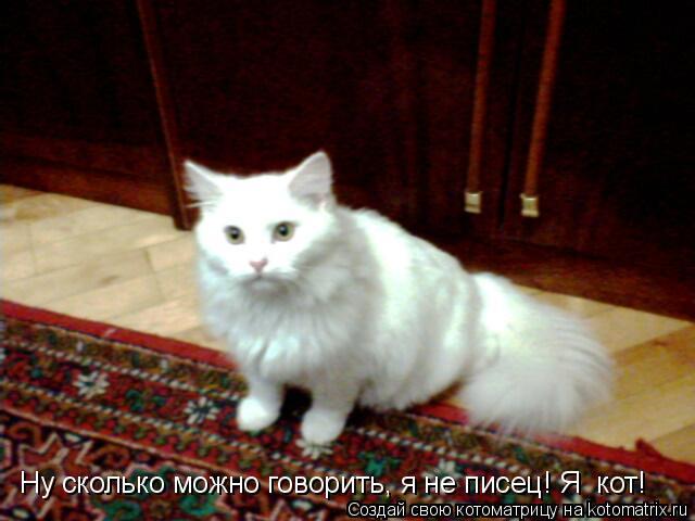 Котоматрица: Ну сколько можно говорить, я не писец! Я  кот!