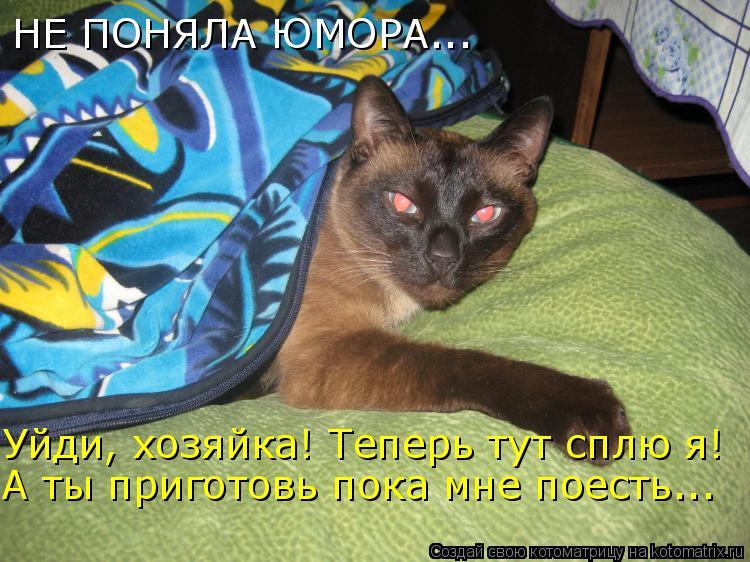 Котоматрица: Уйди, хозяйка! Теперь тут сплю я! А ты приготовь пока мне поесть... НЕ ПОНЯЛА ЮМОРА...