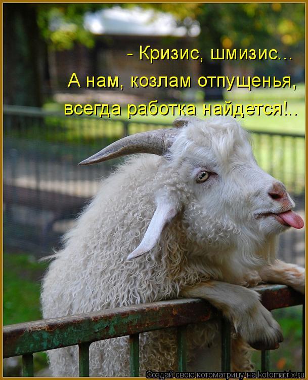Котоматрица: - Кризис, шмизис... А нам, козлам отпущенья,  всегда работка найдется!..