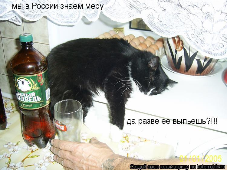 Котоматрица: мы в России знаем меру да разве ее выпьешь?!!!