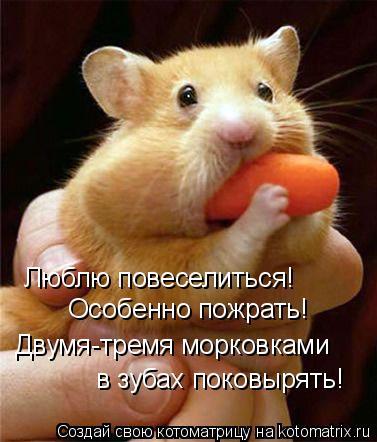 Котоматрица: Люблю повеселиться! Особенно пожрать! Двумя-тремя морковками в зубах поковырять!