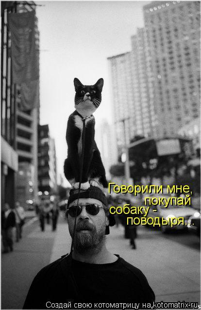 Котоматрица: Говорили мне, покупай  собаку -  поводыря...