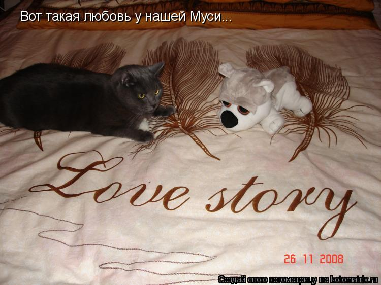 Котоматрица: Вот такая любовь у нашей Муси...