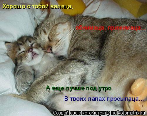 Котоматрица: Хорошо с тобой валяца, В твоих лапах просыпаца.... обнимаца, прижимаца... А еще лучше под утро