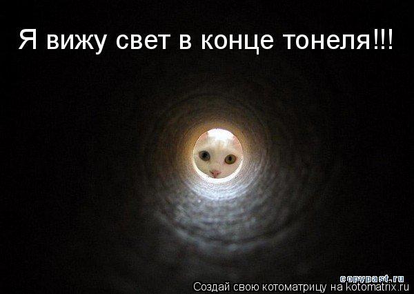 Котоматрица: Я вижу свет в конце тонеля!!!
