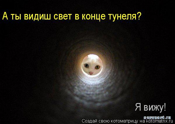 Котоматрица: А ты видиш свет в конце тунеля? Я вижу!
