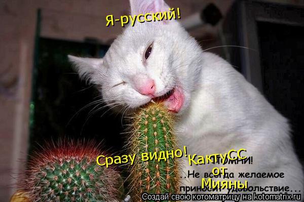 Котоматрица: Я-русский! Сразу видно! КактуСС от Мияны