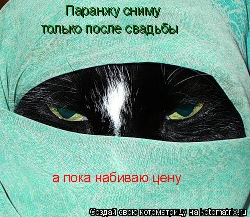 http://kotomatrix.ru/images/lolz/2008/11/27/5o.jpg