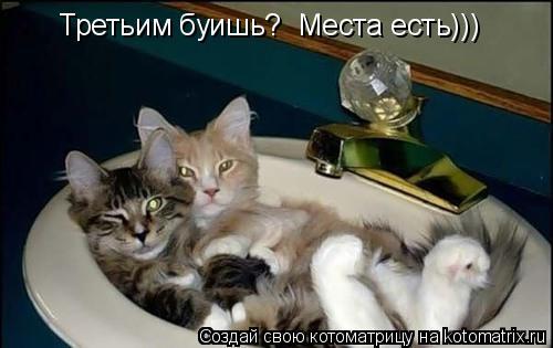 Котоматрица: Третьим буишь?  Места есть)))