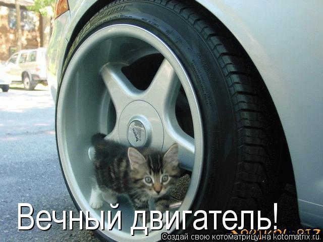 Котоматрица: Вечный двигатель!