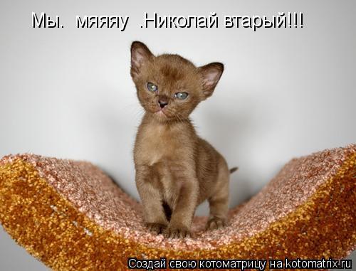 Котоматрица: Мы.  мяяяу  .Николай втарый!!!