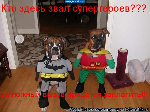 Котоматрица: Кто здесь звал супергероев???  За ложный вызов придется заплатить!!!
