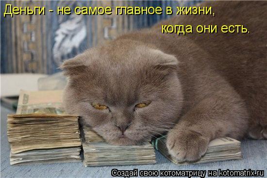 Котоматрица: Деньги - не самое главное в жизни,  когда они есть.
