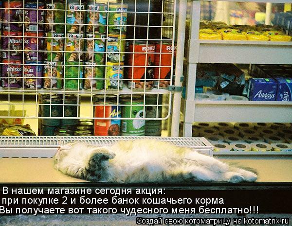 Котоматрица: В нашем магазине сегодня акция:  при покупке 2 и более банок кошачьего корма Вы получаете вот такого чудесного меня бесплатно!!!
