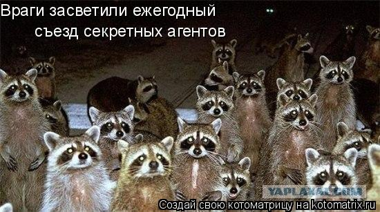 Котоматрица: Враги засветили ежегодный  съезд секретных агентов