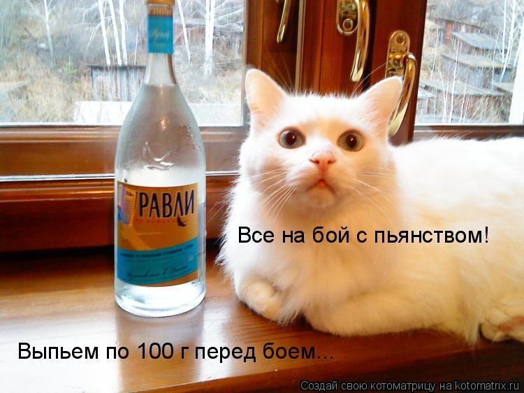 Котоматрица: Все на бой с пьянством!  Выпьем по 100 г перед боем...