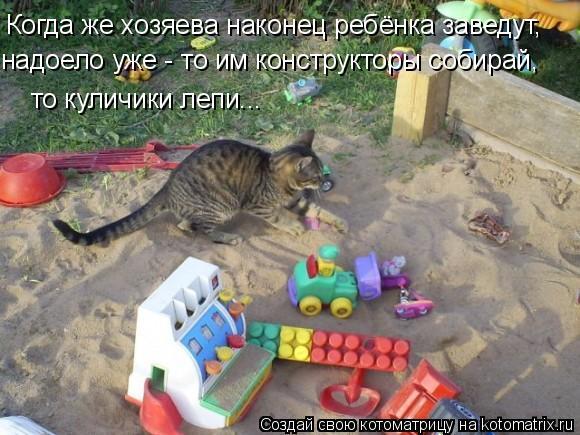 Котоматрица: то куличики лепи... Когда же хозяева наконец ребёнка заведут, надоело уже - то им конструкторы собирай,