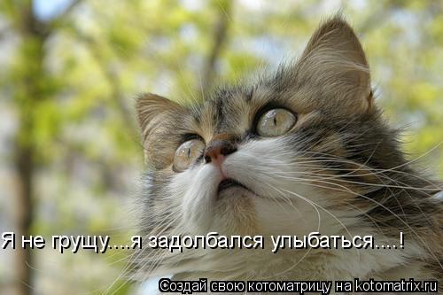 Котоматрица: Я не грущу....я задолбался улыбаться....!