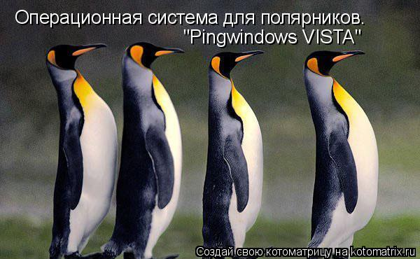 "Котоматрица: Операционная система для полярников. ""Pingwindows VISTA"""