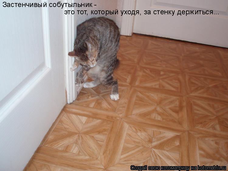Котоматрица: Застенчивый собутыльник -  это тот, который уходя, за стенку держиться...