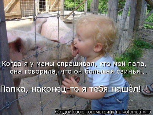 Котоматрица: Когда я у мамы спрашивал, кто мой папа,  она говорила, что он большая свинья... Папка, наконец-то я тебя нашёл!!!