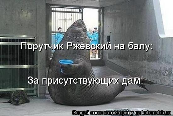 Котоматрица: Порутчик Ржевский на балу: За присутствующих дам!