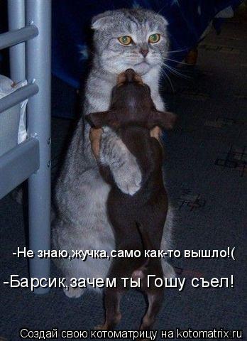 Котоматрица: -Барсик,зачем ты Гошу съел! -Не знаю,жучка,само как-то вышло!(